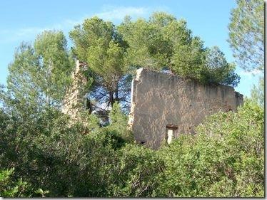 Eine tolle Ruine, die ich gleich um die Ecke in einem Waldstück entdeckt habe