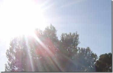Die Sonne knallt hier zum Jahresende nochmal richtig rein!
