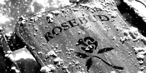 Rosebud-
