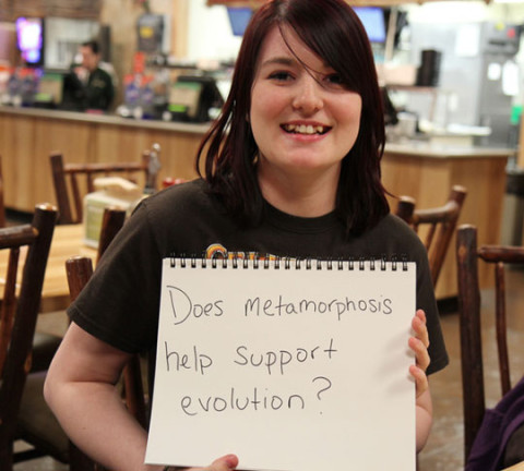 funny-messages-creationist-vs-evolution-metamorphosis