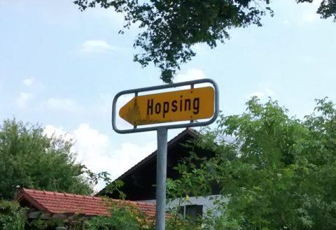 Hopsing