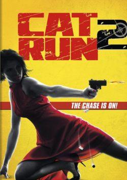 cat-run-2-2014-sat-thu-meo-hoang-2-1409458477